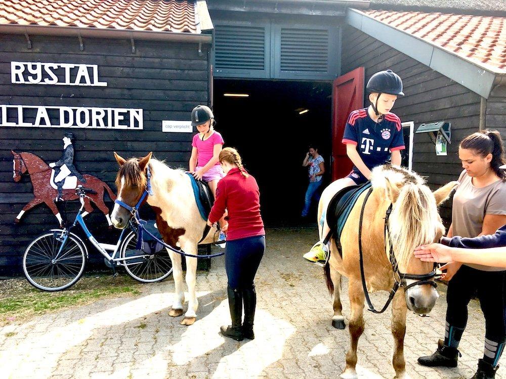 paardrijden op Ameland